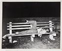 Black Man Sleeping On Bench