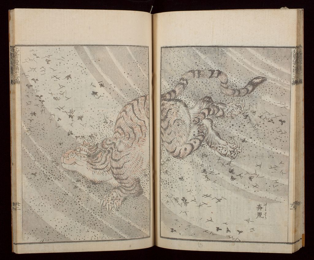Hokusai Manga (Hokusai Sketchbooks), Vol. 13