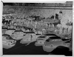 Untitled (Overview Of Pig Show In Town Square)