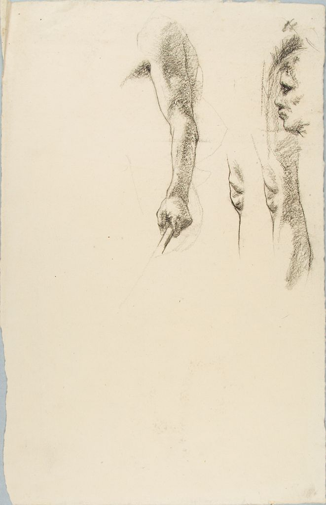 Sketches Of Parts Of The Human Body