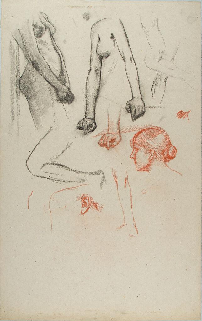 Studies Of Female Body Parts