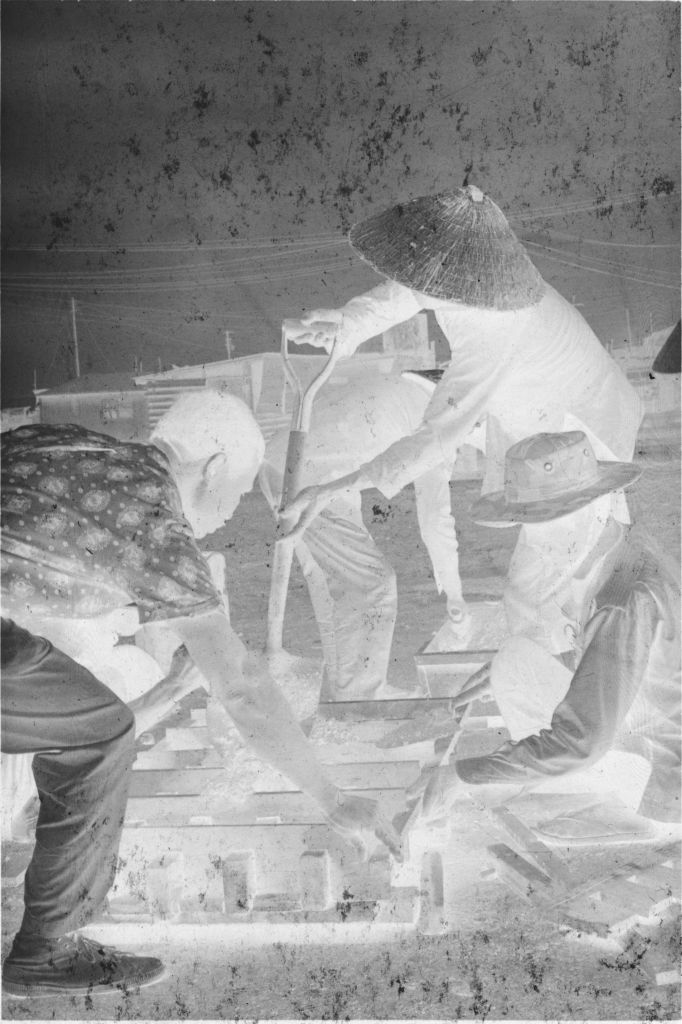 Untitled (Vietnamese Workers Tending Dirt Beds, Vietnam)
