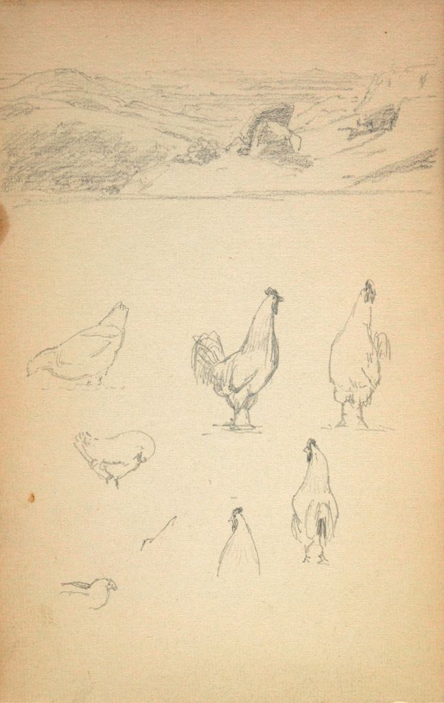 Blank Page; Verso: Small Landscape; Chickens