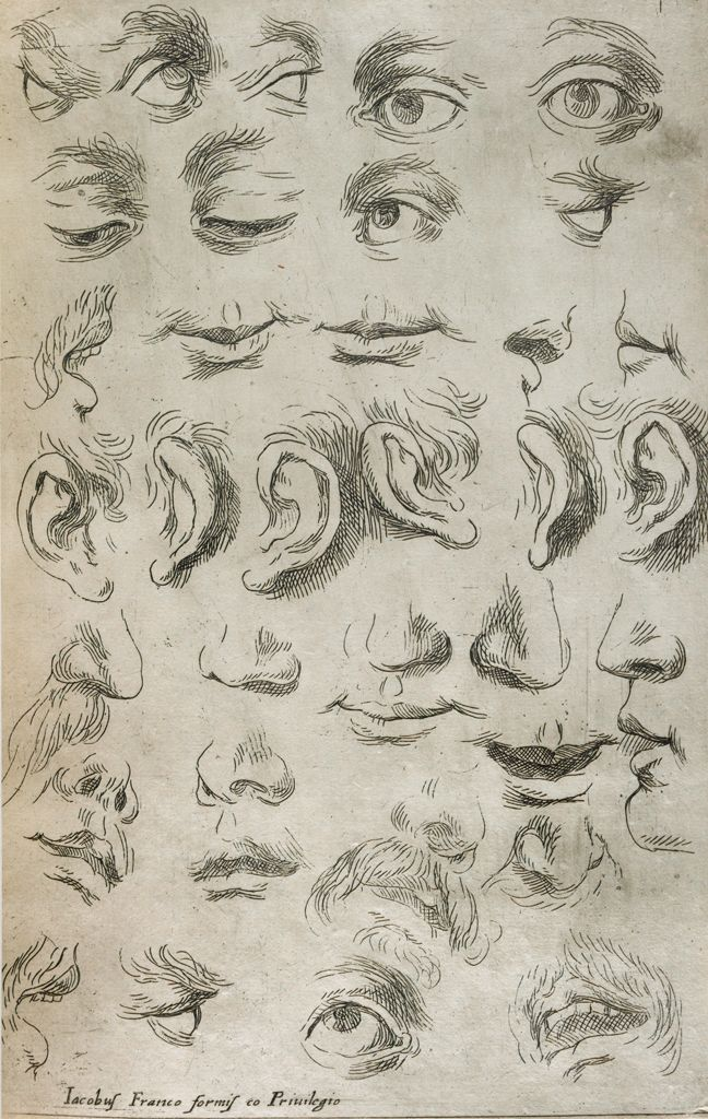 Eyes, Noses, Mouths And Ears