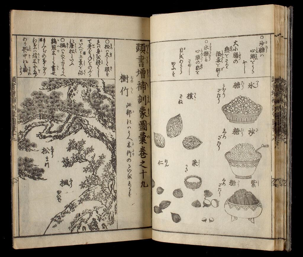 Great Illustrated Encyclopedia, Revised And Enlarged (Sōbo Tōsho Kinmō Zui Taisei), Vol. 8