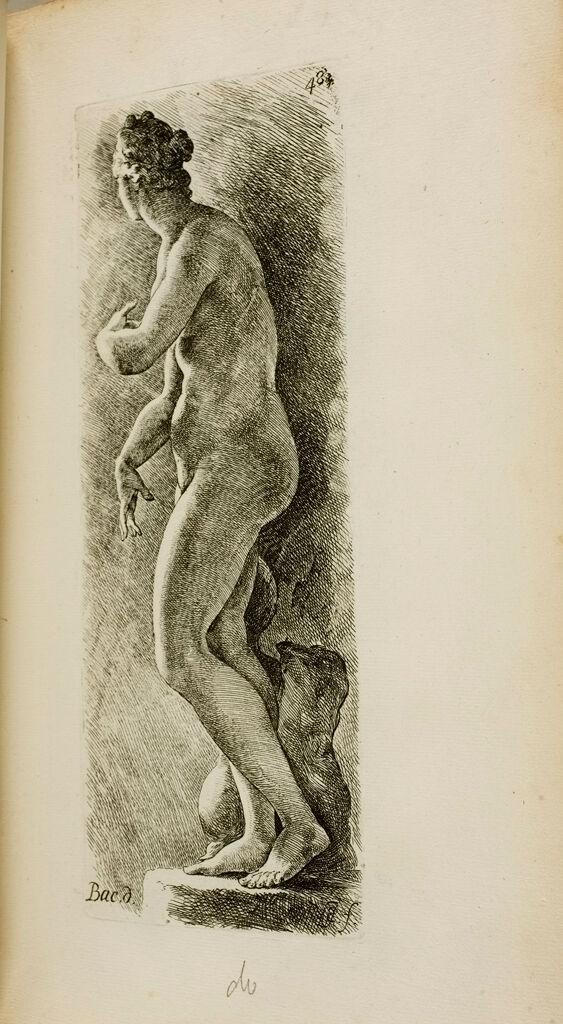 Plate 48: Aphrodite, Known As The Venus De' Medici