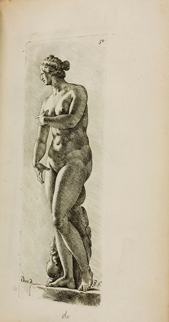 Plate 50: Aphrodite, Known As The Venus De' Medici