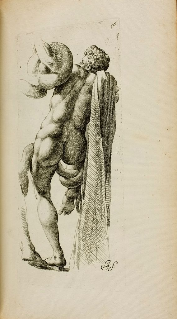 Plate 56: Elder Son Of Laocoon And Part Of Laocoon's Left Leg