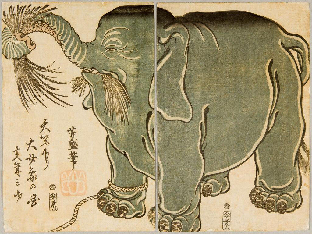 Diptych: Female Elephant From Central India (Tenjiku Kudari Daijōzō No Zu), Published By Otakuya Takichi