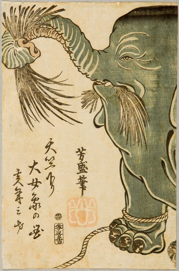 Female Elephant From Central India (Tenjiku Kudari Daijōzō No Zu), Published By Otakuya Takichi