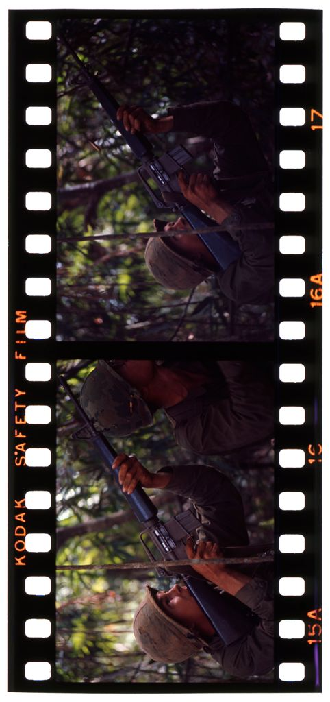Untitled (Soldiers Aiming Guns Into Trees During Fighting In Central Highlands Near Dak To, Vietnam)