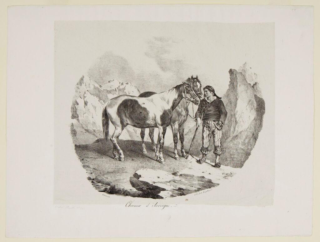 Auvergne Horses