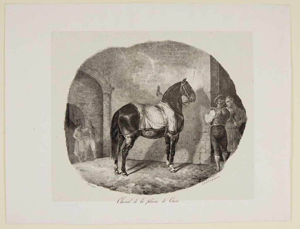 Horse From The Caen Plain