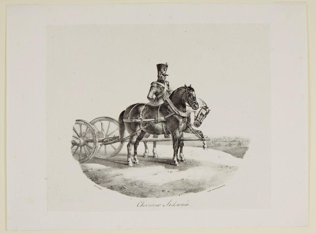 Horses From The Ardennés
