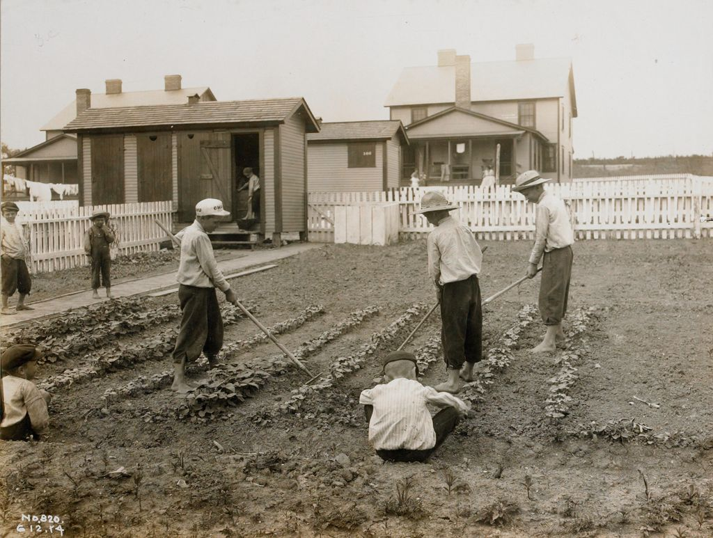Industrial Problems, Welfare Work: United States: Welfare And Educational Work For The Families Of Employees: Boys Learning The Art Of Gardening At The Model Home.