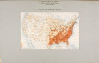 Races, Negroes: United States: Extent of the Negro Problem. Social Conditions, United States Census of 1900. Composition and Distribution of Population