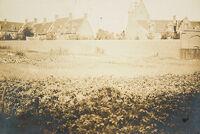 Religious Agencies: Belgium. Ghent. Mont-Saint-Amand Béguinage: Environment Before Immigration. Standards Of Living In European Cities. Social Conditions In Belgium: 1905: Mont-Saint-Amand: Béguinage: Ghent, Belgium.