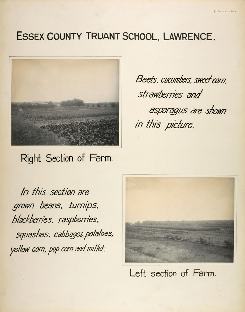 Crime, Children, Truant Schools: United States. Massachusetts. Lawrence. Essex County Truant School: Essex County Truant School, Lawrence.