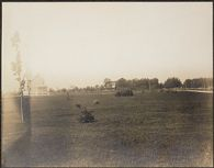 Races, Jews: United States. New Jersey. Woodbine. Baron de Hirsch Agricultural and Industrial School: Woodbine Settlement and School, Woodbine, N.J. Baron de Hirsch Fund.: 189. Views of School Lawns.