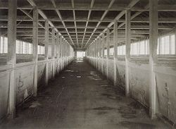 Defectives, Insane: United States. New Hampshire. Concord. State Hospital: New Hampshire State Charitable and Correctional Institutions.: New Hampshire State Hospital. Farm Colony.: The Piggery - Interior..   Social Museum Collection