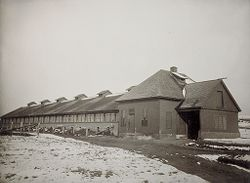 Defectives, Insane: United States. New Hampshire. Concord. State Hospital: New Hampshire State Charitable and Correctional Institutions.: New Hampshire State Hospital. Farm Colony.: The Piggery..   Social Museum Collection