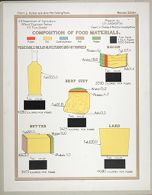 Health, General: United States. U.S. Department of Agriculture. Composition of Food Materials: Chart 5. Butter and other Fat-Yielding Foods.: Vegetable Oils, as Olive, Peanut and Cottonseed. Bacon. Beef Suet. Butter. Lard