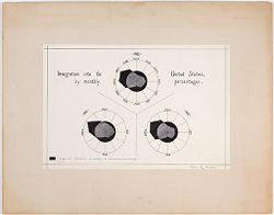 Races, Immigration: United States. Immigration to the United States: Immigration into the United States, by monthly percentages..   Social Museum Collection