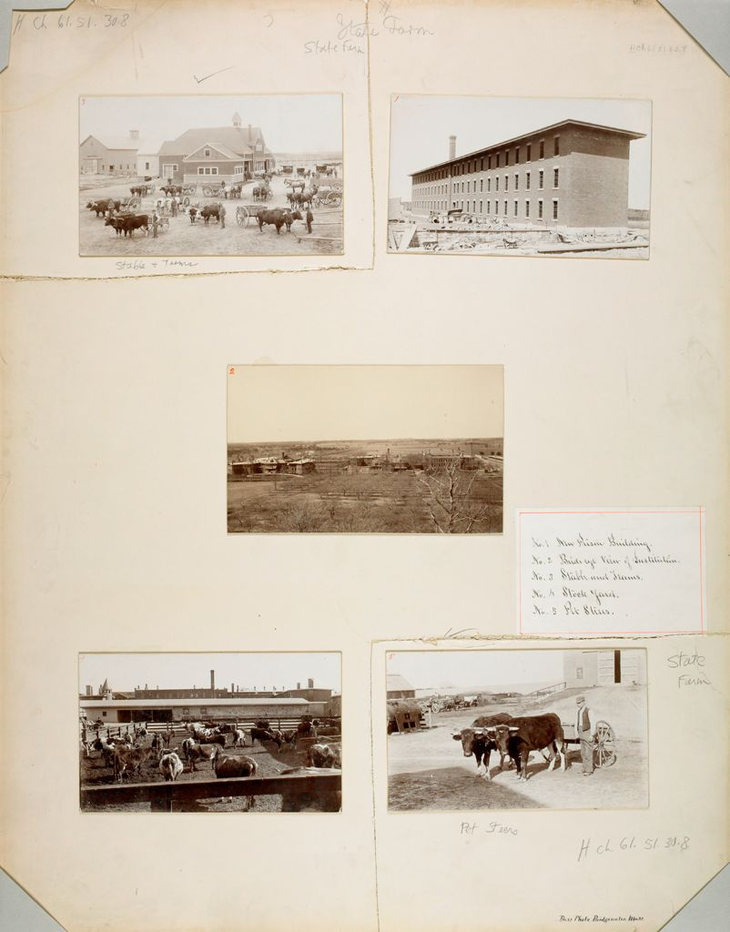 Charity, Public: United States. Massachusetts. Bridgewater. State Farm: State Farm