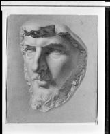 Study of an Antique Head Fragment