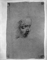 Study of a Man's Head, Stern Expression