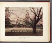 Work 20 of 30 Title: Shinto shrine, Toshogu, in Ueno Park, To... Date: 188-?