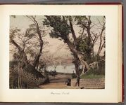 Work 22 of 30 Title: Road in Ueno Park, with Shinobazu pond i... Date: 188-?