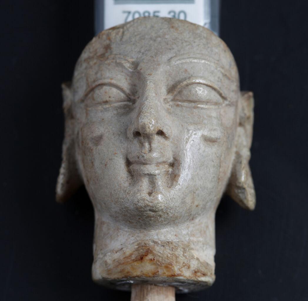 Ivory Head