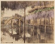 Work 2 of 48 Title: Wisteria Creator: Tamamura, Kozaburo Date: ca. 1880