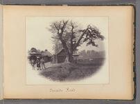 Work 27 of 47 Title: Tocaido road Creator: Beato, Felice Date: 1867?