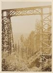 Work 48 of 58 Title: Trestles, Siskiyou Mts. Date: ca. 1895