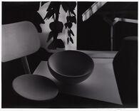 Empty Bowl with Canopy (horizontal)
