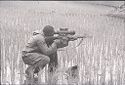 Untitled (Soldier Crouched In Rice Paddy Aiming Weapon, Vietnam)