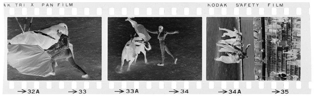 Untitled (Bullfight (