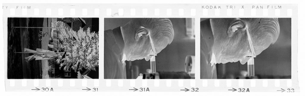 Untitled (Dr. Herman M. Juergens, Walking Outside; Looking Through Microscope)