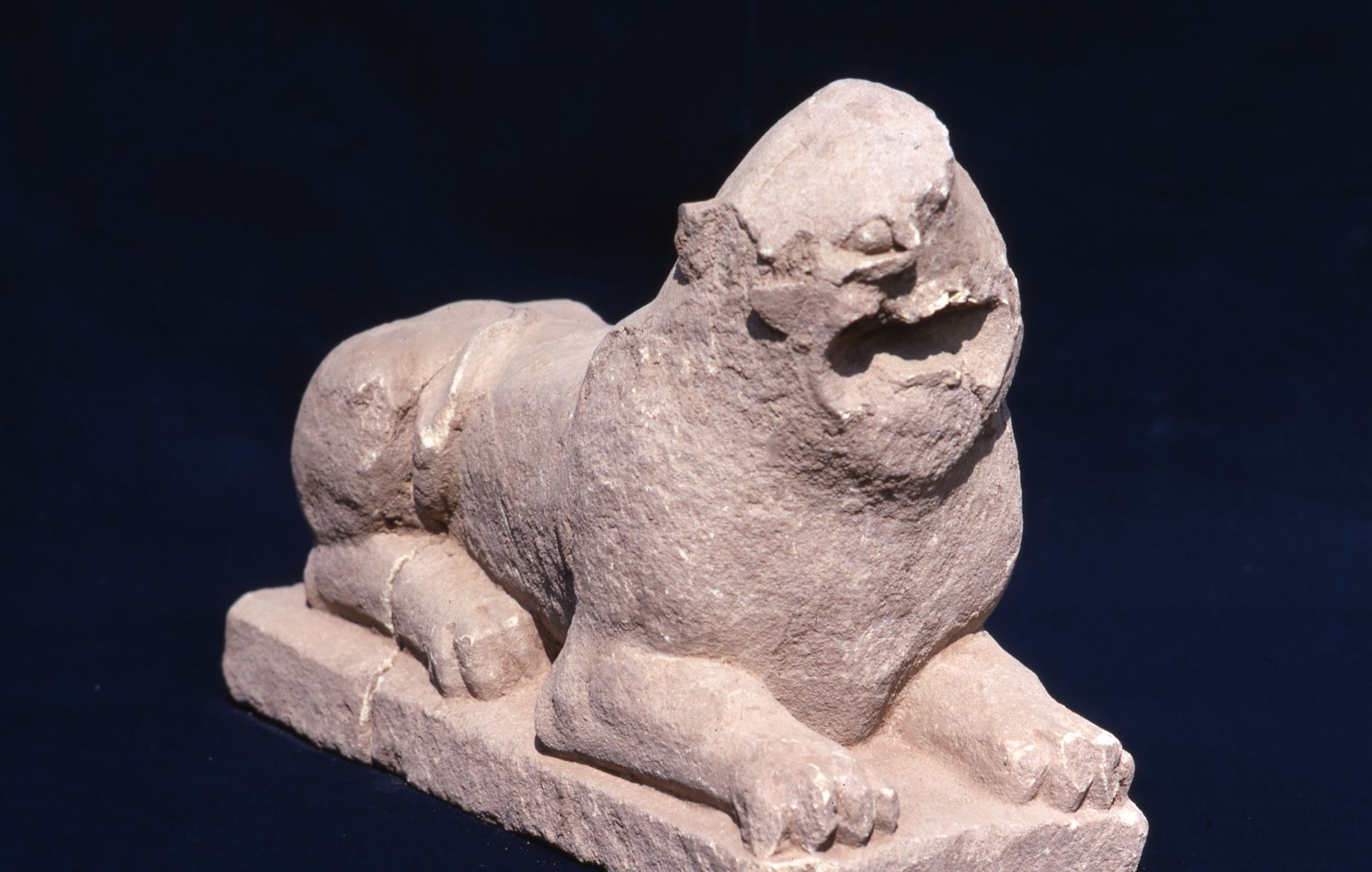 Sandstone Lion from Altar of Cybele, Pactolus North