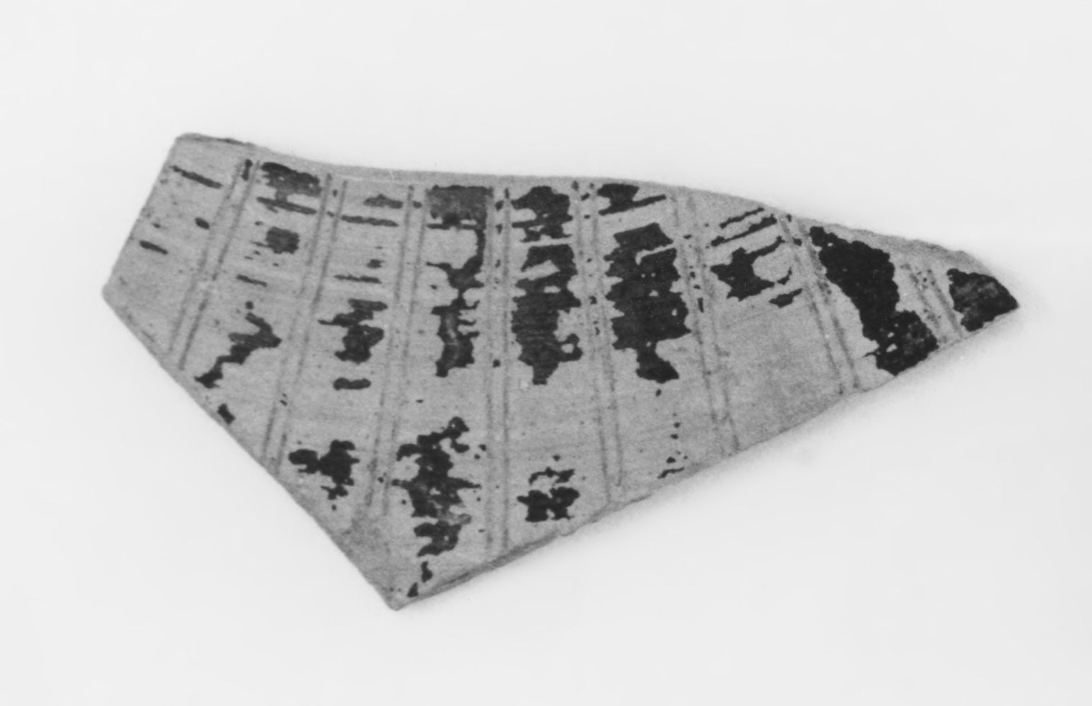 Early Corinthian Oinochoe Fragment