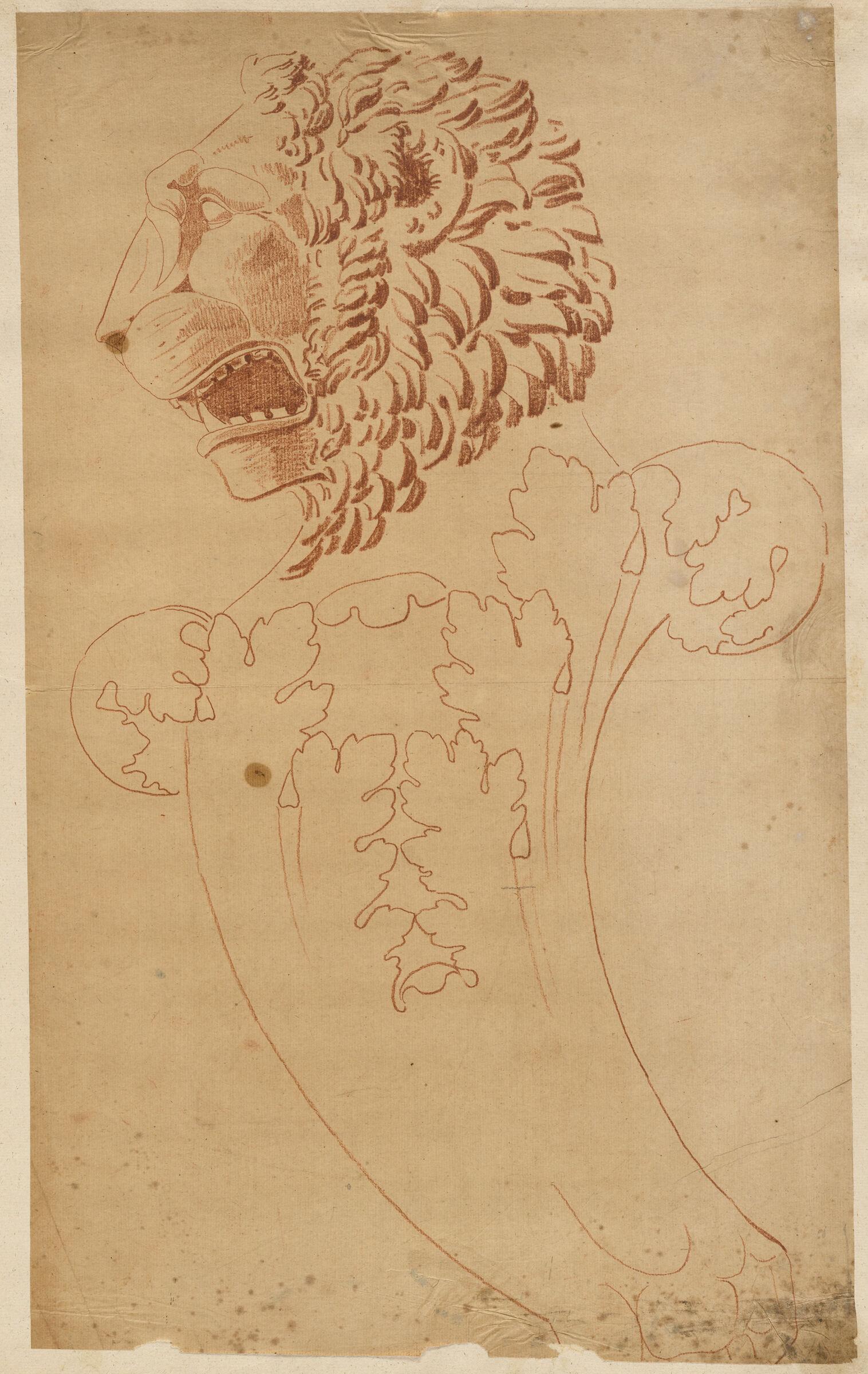 Head Of A Lion Term, Profile View As Far As Knee
