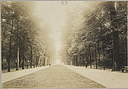 Education, Social and Political: Belgium. Brussels. Institut Solvay: Social Conditions in Belgium, 1903: View of Park.   Social Museum Collection