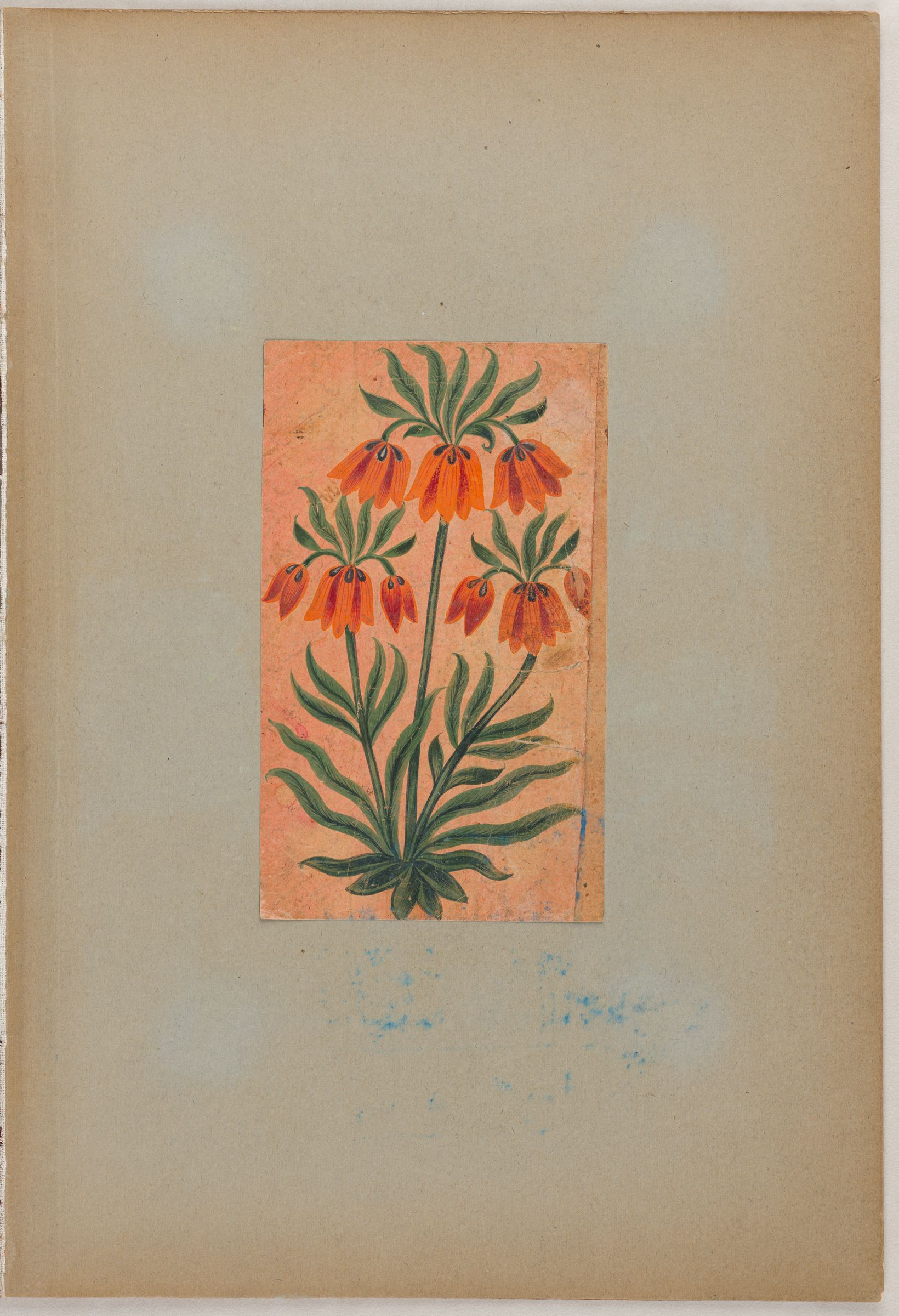 Folio 1 From An Album Of Drawings And Paintings: Folio From A Qu'Ran: Sura 1 (Recto); Crown Imperial (Fritillaria Imperialis) (Verso)