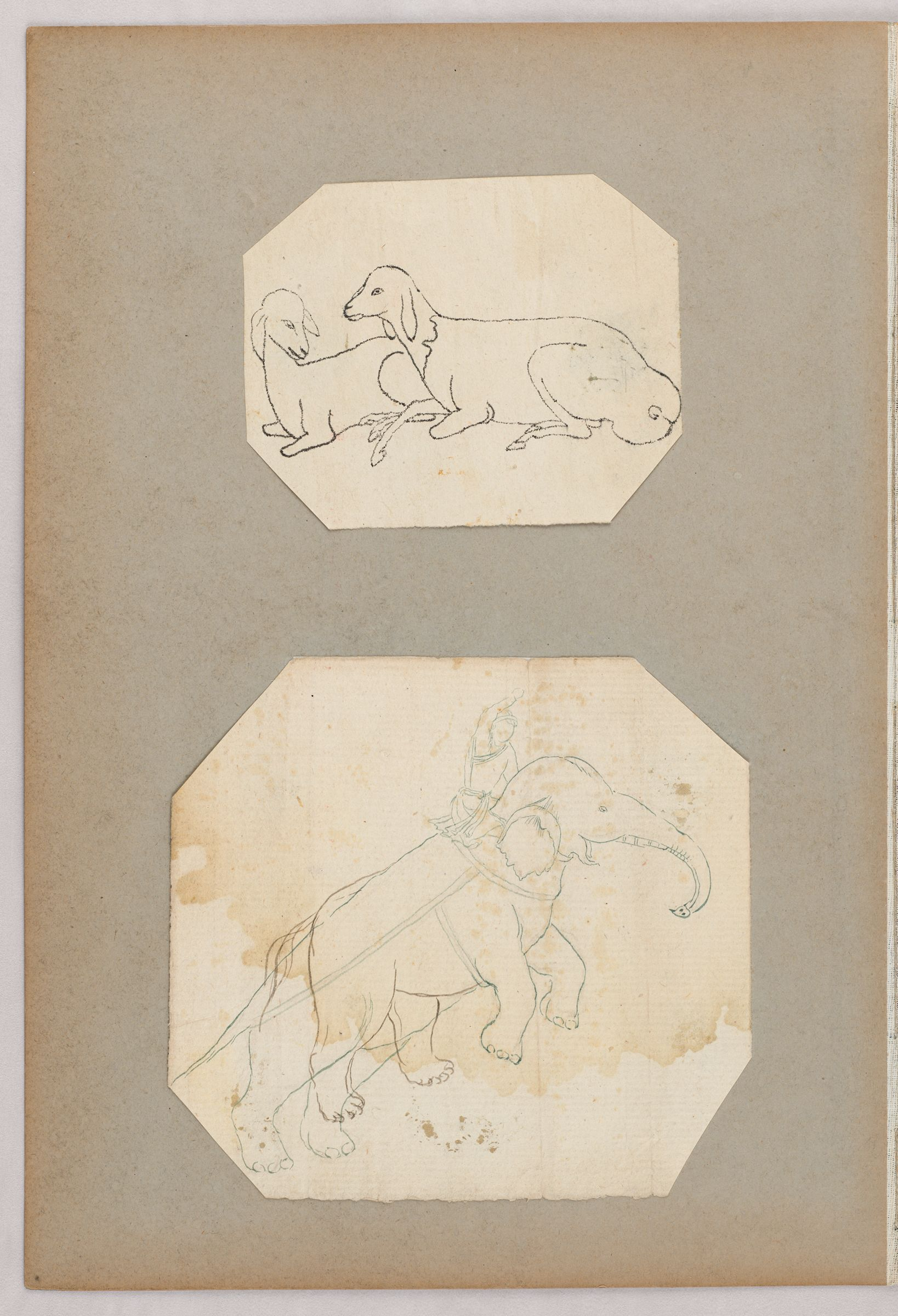 Folio 35 From An Album Of Drawings And Paintings: Two Sheets: Two Sheep; Elephant With Rider In Indian Garb (Recto); Blank Page (Verso)