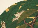 Loquat Flower (Biwa), From Eight Fans Of Seasonal Flowers And Plants