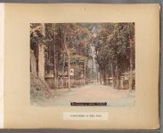 Work 4 of 50 Title: Garden-street at Shiba, Tokio Creator: Kusakabe, Kimbei Date: 188-?