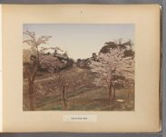 Work 6 of 50 Title: View of Uyeno, Tokio Date: 188-?