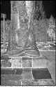 Untitled (Seated Buddha, Borobudur, Java)